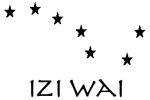 Izi Wai, LE logiciel d'astrologie chinoise
